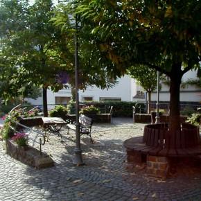 Dorferneuerung Gemeinde, Neef